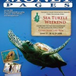 MoneyPayges_Glynn_Cover_SeaTurtleWeekend