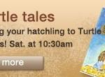 turtle_tales